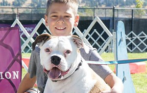 Boy with dog at Summer of Inspiration event